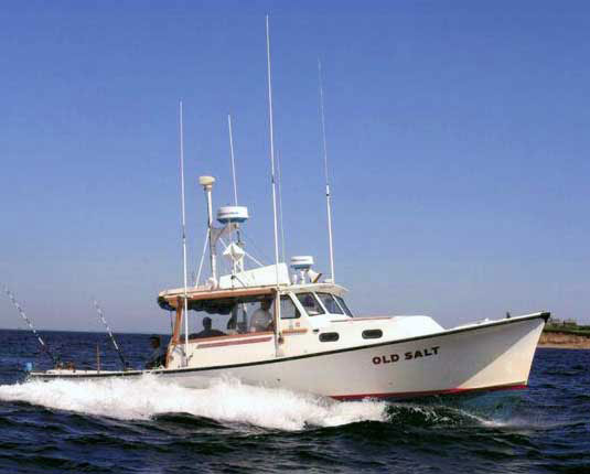 Ri charter fishing boat old salt sport fishing charters for Sport fishing charters