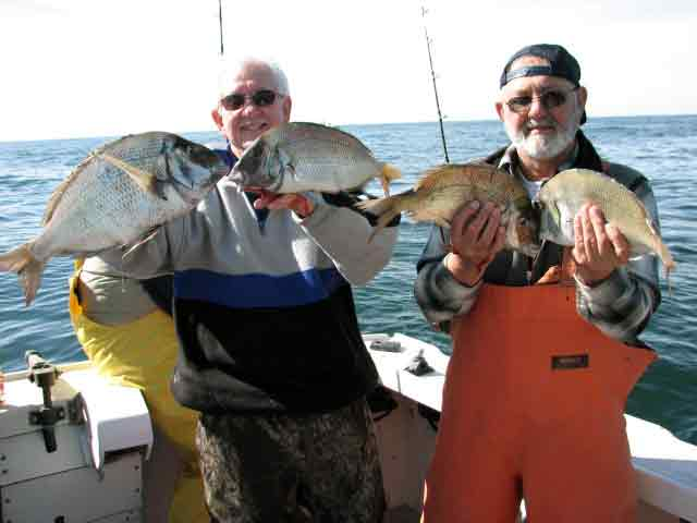 tackle busting porgy