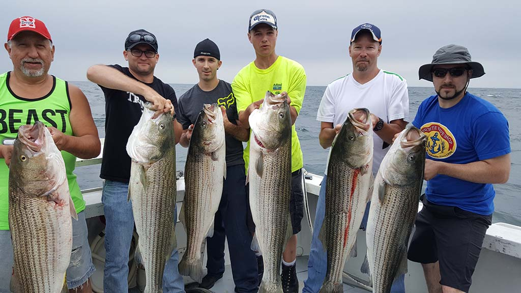 cblock island, ri bass fishing