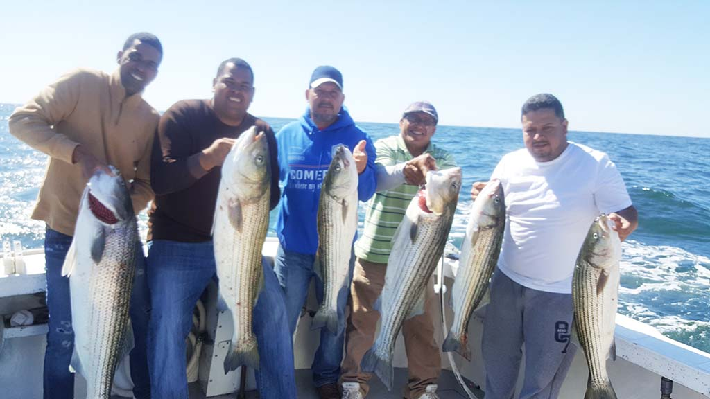 stripers rhode island fishing charters